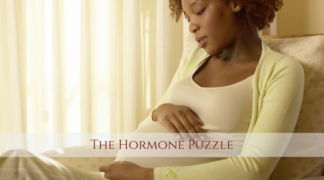 The Hormone Puzzle with Kela Smith