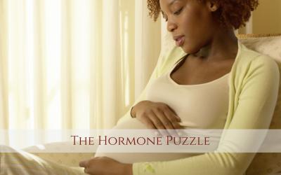 The Hormone Puzzle with Kela Smith
