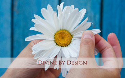 Divine by Design with Laurie Hartley Moore